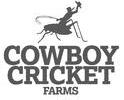 CowboyCricket